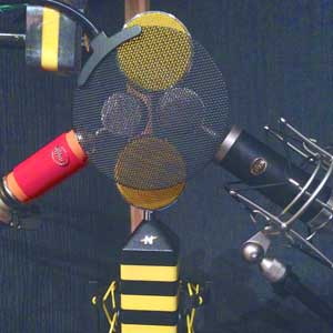 Neat Microphones vs. Blue Microphones VO Mic Shootout