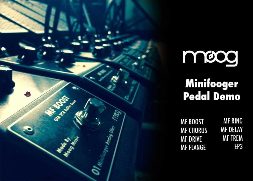 Moog Minifooger Pedal Demo