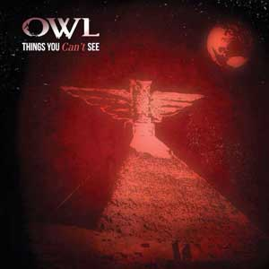 Owl Things You Can't See album cover