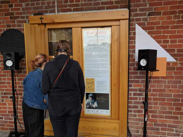 Fest-goers check out the Burt's Bees exhibit and pollinator synthesizer
