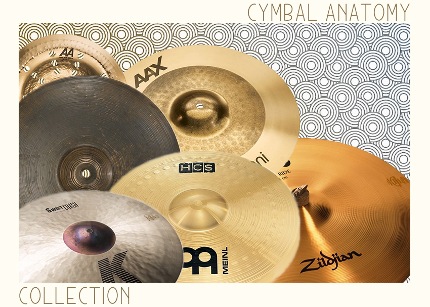 Cymbal Anatomy Collection